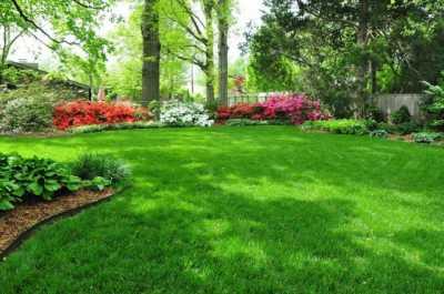 Уход за зеленым участком